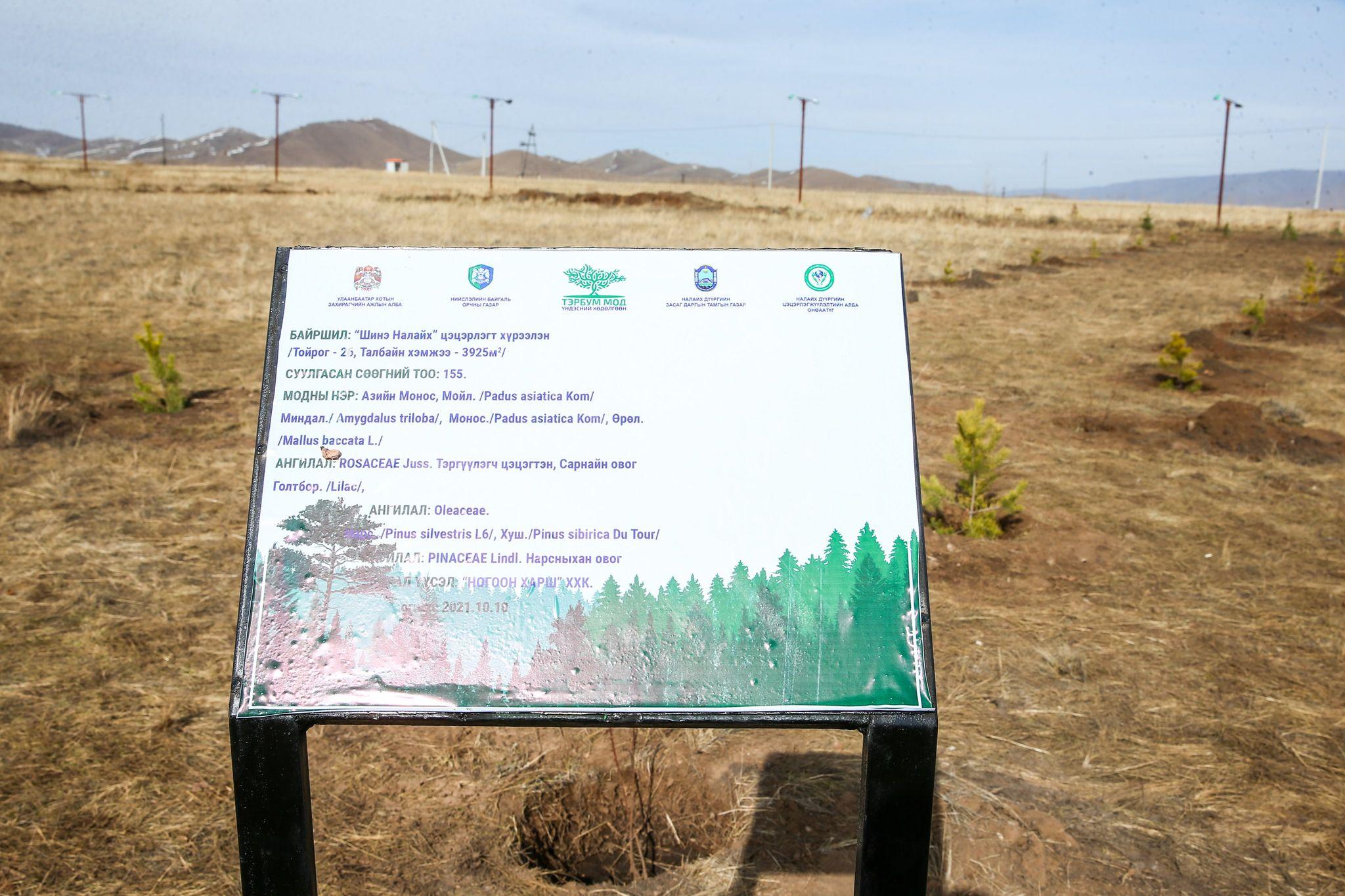 """244785280_306324467528295_9161347983149611063_n """"Тэрбум мод"""" үндэсний хөдөлгөөнд 320 орчим байгууллага, ААН нэгджээ"""